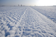 Landscape with snow Royalty Free Stock Photos