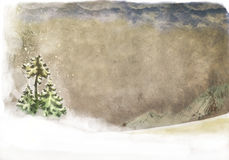 Landscape with snow-clad fir tree. Winter landscape for postcard, with spruce and mountain on horizon Stock Photography