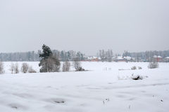 The landscape is snow-covered field on a cloudy winter day Stock Photo