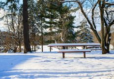 Snow-covered picnic table in the trees royalty free stock photography