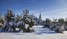 Landscape with snow, fir trees and church Royalty Free Stock Photo