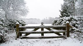 Landscape in the snow in the Netherlands stock video footage