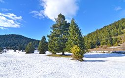 Landscape of snowy Oeta mountain central Greece - famous winter destinations Stock Image
