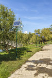 Landscape of solar panels located in a park Stock Photography