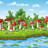 Landscape of some fly mushrooms. And water Stock Photography