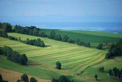 landscape sommaren Royaltyfria Bilder
