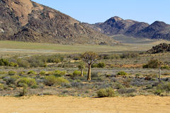 Landscape in South Africa Royalty Free Stock Image