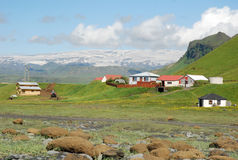 Iceland landscape south coast - with glacier-grassland. Glacier with snow - green grassland - houses , Iceland landscape south coast royalty free stock image