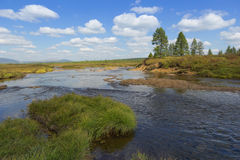Landscape in South Yakutia Stock Photography