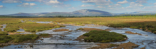 Landscape in Southern Yakutia Royalty Free Stock Image