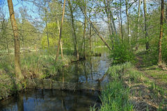 Landscape in the Spree woods & x28;Spreewald& x29;, Germany. Landscape with a little waterway in the Spree woods & x28;Spreewald& x29;, Brandenburg, Germany Stock Photography