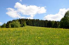 Landscape spring Germany Royalty Free Stock Images