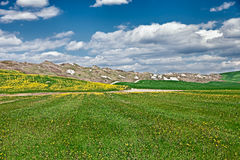 Landscape at spring of the hills in the Crete Senesi, to the sou. Th of Siena in Tuscany, Italy, with green meadow and yellow flowers Stock Image