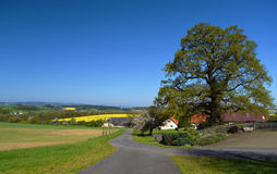 Landscape in spring south of Bohemia Stock Images