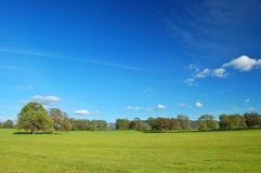 landscape springtime royaltyfri foto