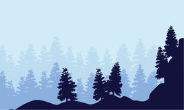 Landscape of spruce forest silhouettes. Vector art Stock Photos