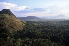 Landscape, Sri Lanka Stock Image