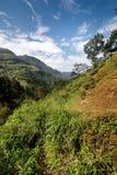 Landscape of Sri Lanka Stock Image
