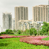 landscape stads- Royaltyfri Fotografi