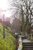 Landscape with stairs and street lamp. Background of park with stairs and street lamp Stock Image