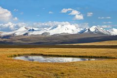 Landscape steppe shore lake, Ukok Plateau, Altai, R Stock Image