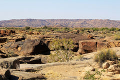 Stone desert Stock Image