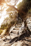 Landscape with stone stairs Royalty Free Stock Photography