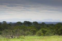 Landscape of storm , Kruger, South Africa Royalty Free Stock Images