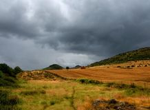 Landscape with storm. Landscape with yellow colours under sky threatening storm royalty free stock images