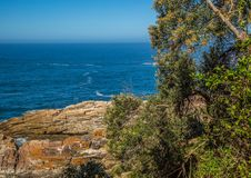 Landscape at the Storms River Mouth at the Indian Ocean Royalty Free Stock Photos