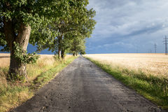 Landscape before storms with rural road about cereal field Royalty Free Stock Photos