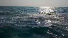 Landscape of stormy sea. Magnificent landscape of the stormy sea on the clear sky background. Waves are crashing on the breakwater. Sun is shining on the water stock video footage
