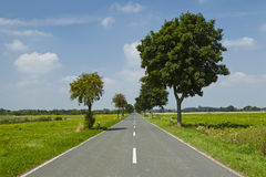 Landscape with a straight road Stock Photos