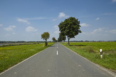 Landscape with a straight road Stock Photography