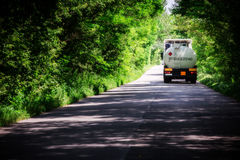 Landscape of straight road under the trees.Green tunnel and an empty asphalt road Royalty Free Stock Photo