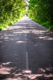 Landscape of straight road under the trees.Green tunnel and an empty asphalt road.  Stock Photo