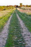 Landscape with straight rural dirt road in field Stock Photos