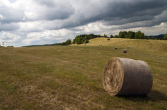 Landscape with straw bales Stock Images