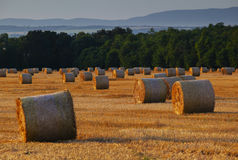 Landscape with straw bales Stock Photography