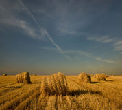 Landscape. Straw bales in the field. Evening. Royalty Free Stock Image