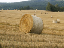 Landscape with straw rolls Royalty Free Stock Photos