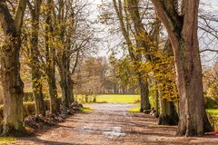 Landscape and street in autumn spring outdoor Royalty Free Stock Images