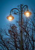 Landscape with street lantern Stock Images
