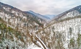 Landscape of Strengbach Valley in the Vosges Mountains near Ribeauville. Alsace, France Royalty Free Stock Image