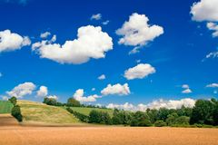 Landscape in summer Stock Image