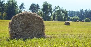 Landscape in the summer with bales of hay on the field. Panorama. Large format. Banner stock photos
