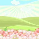 Landscape in summer day Stock Image