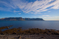 Landscape of summer in the fjords of Iceland Stock Photography