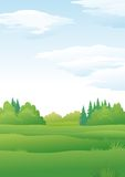 Landscape, summer forest Royalty Free Stock Images