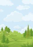 Landscape, summer forest Stock Image